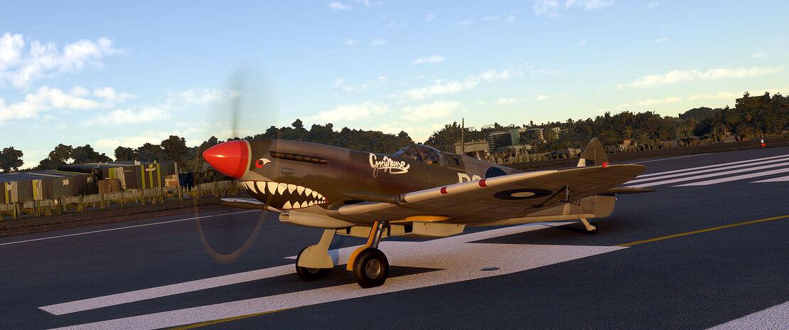Microsoft Flight Simulator 3_5_2021 12_54_29 PM
