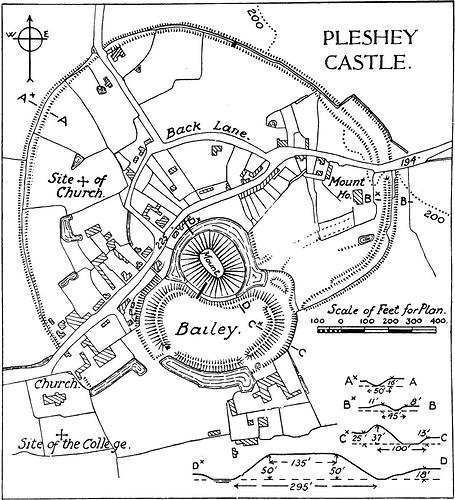 Pleshy Castle