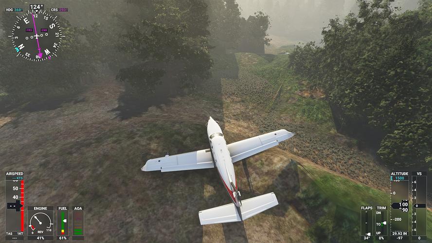 Microsoft Flight Simulator 22_11_2020 01_25_04