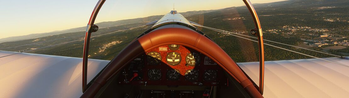 Microsoft Flight Simulator 6_2_2021 11_46_52 PM_result