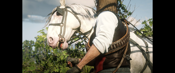 Red Dead Redemption II Screenshot 2020.02.22 - 22.36.26.75